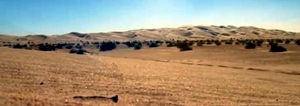 sand dunes300