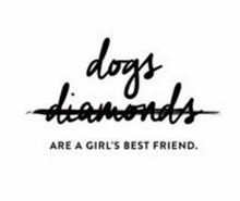dog-diamonds220