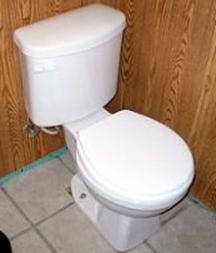 toiletbowl253